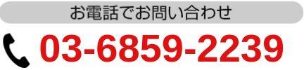 03-6859-2239