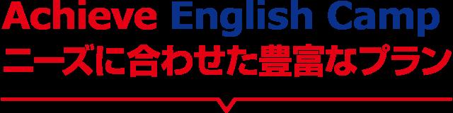 Achieve English Camp ニーズに合わせた豊富なプラン